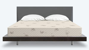 the mattress from the front
