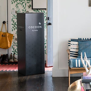 the cocoon is shipped in a box